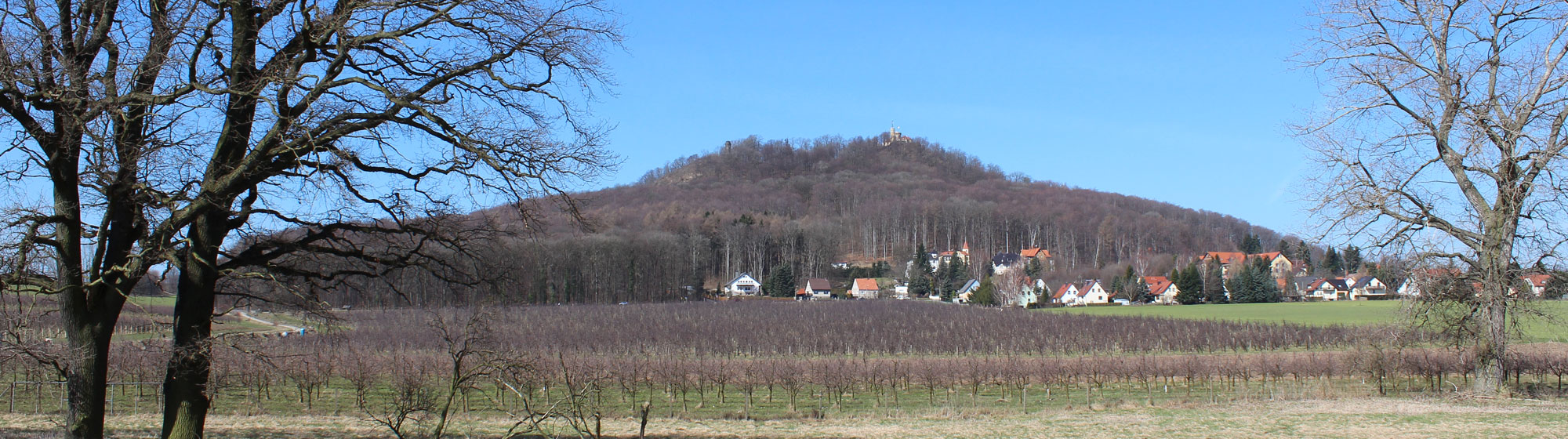 Stadtgut Görlitz LandeskroneFruehling.jpg