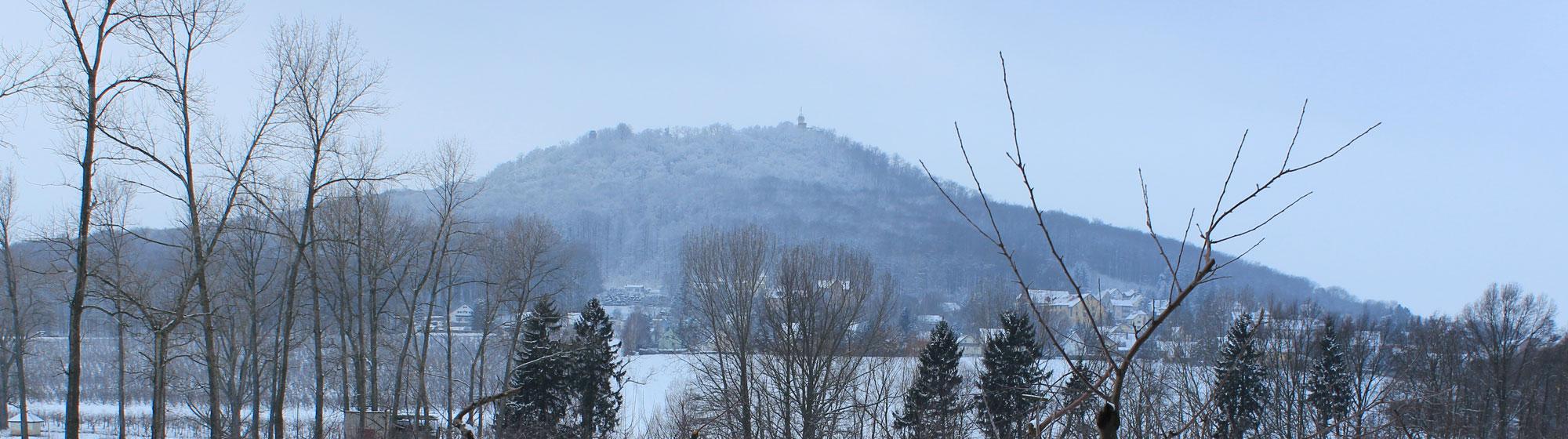 Stadtgut Görlitz Winter-Landeskrone.jpg